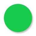 Akrilna boja 25g Fluoroscent Green RYC040