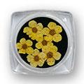 Ukrasno cveće za nokte IF01-02