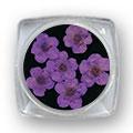 Ukrasno cveće za nokte IF01-07