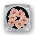 Ukrasno cveće za nokte IF01-11