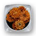Ukrasno cveće za nokte IF04-03