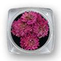 Ukrasno cveće za nokte IF04-04