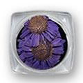 Ukrasno cveće za nokte IF09-08